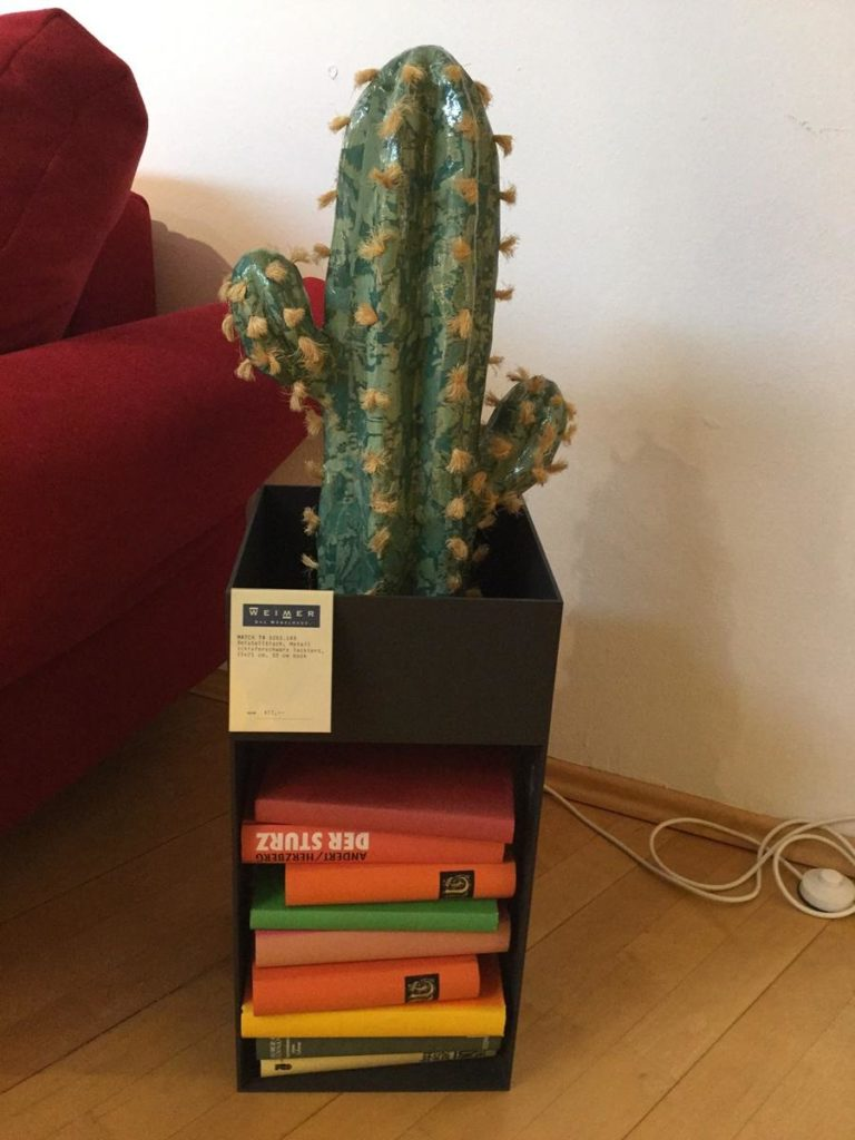 Möbel Weimer Hausausstellung - Kleiner Regalschrank mit Kaktus
